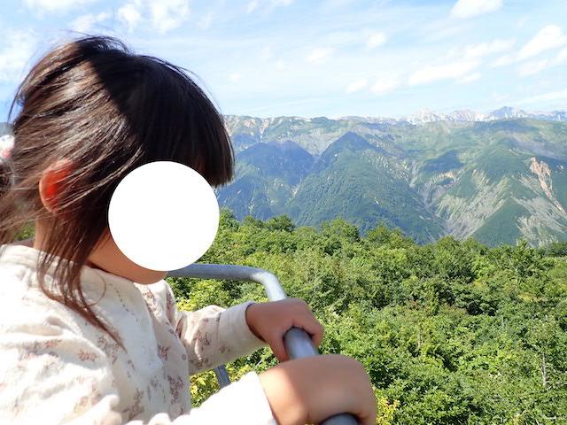 f:id:mochikichi-blog:20200904131826j:plain