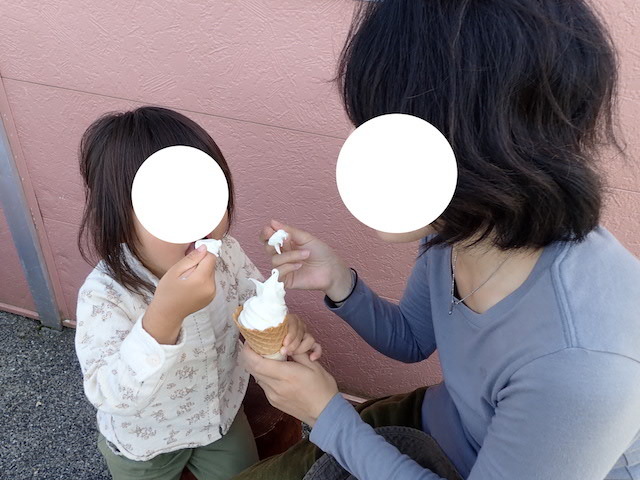 f:id:mochikichi-blog:20200904131838j:plain