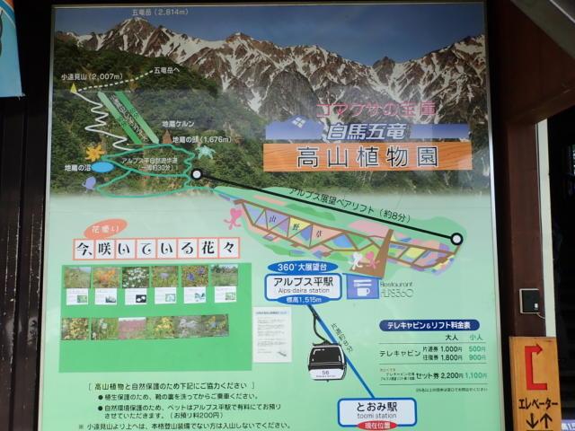 f:id:mochikichi-blog:20200904132359j:plain