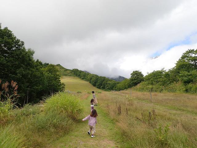 f:id:mochikichi-blog:20200904133944j:plain