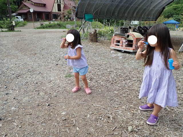 f:id:mochikichi-blog:20200904134229j:plain