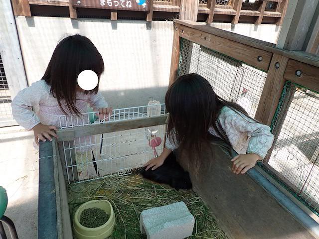 f:id:mochikichi-blog:20200904151603j:plain