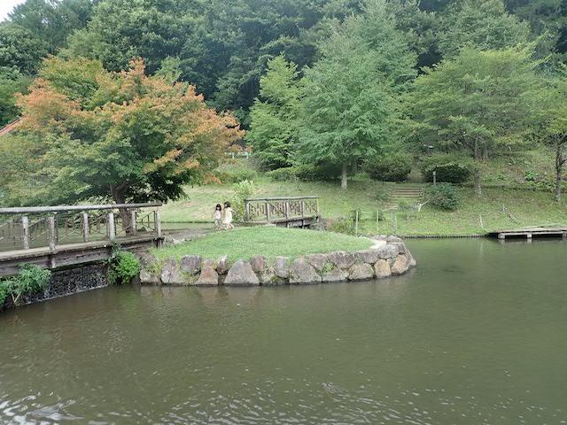 f:id:mochikichi-blog:20200904213936j:plain