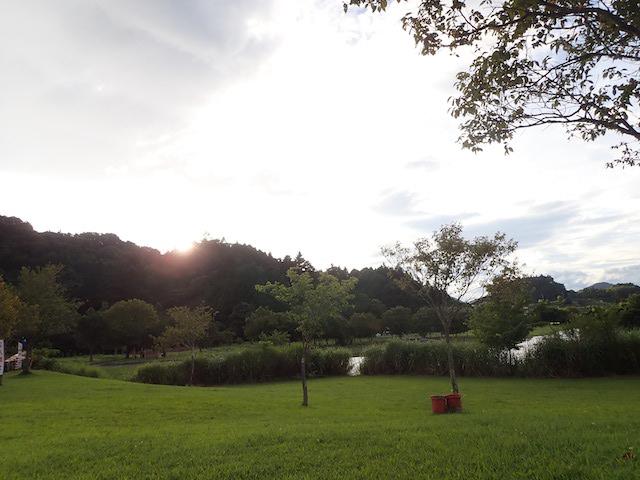 f:id:mochikichi-blog:20200904215359j:plain