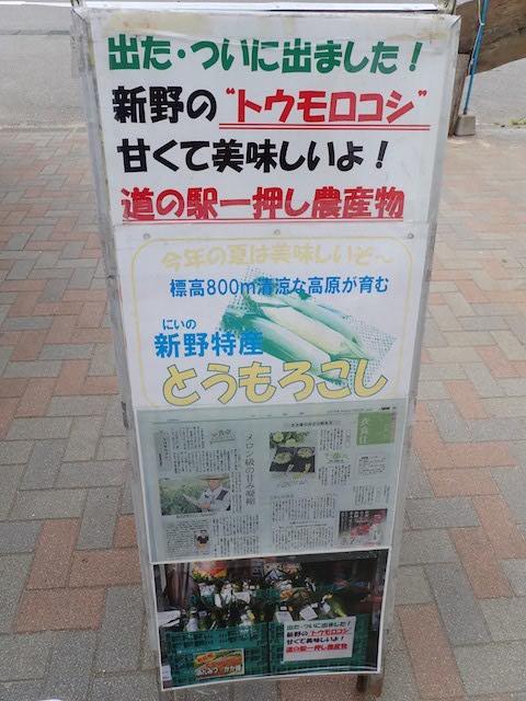 f:id:mochikichi-blog:20200905221859j:plain