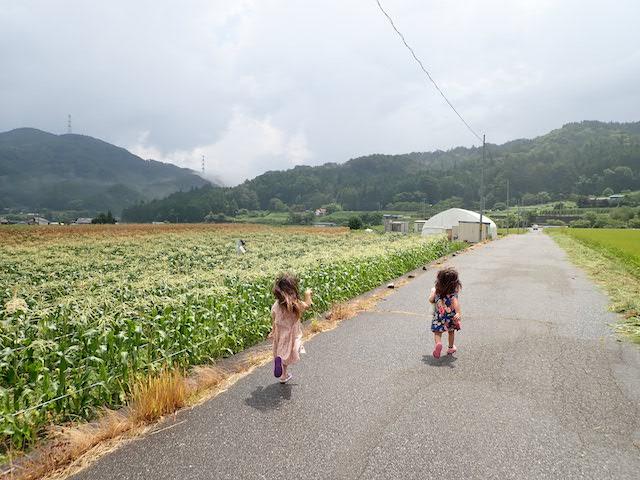f:id:mochikichi-blog:20200905221934j:plain
