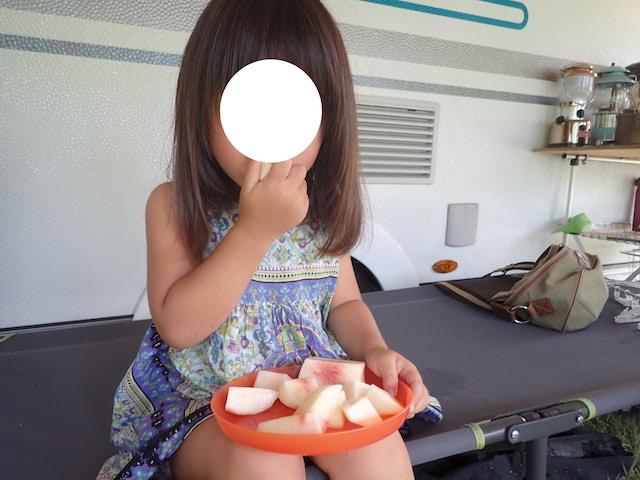 f:id:mochikichi-blog:20200906154837j:plain