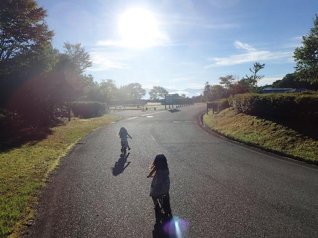 f:id:mochikichi-blog:20200906155125j:plain