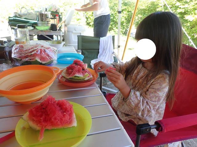 f:id:mochikichi-blog:20200906161133j:plain