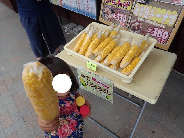 f:id:mochikichi-blog:20200906161224j:plain