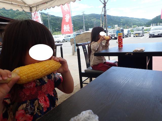 f:id:mochikichi-blog:20200906161229j:plain