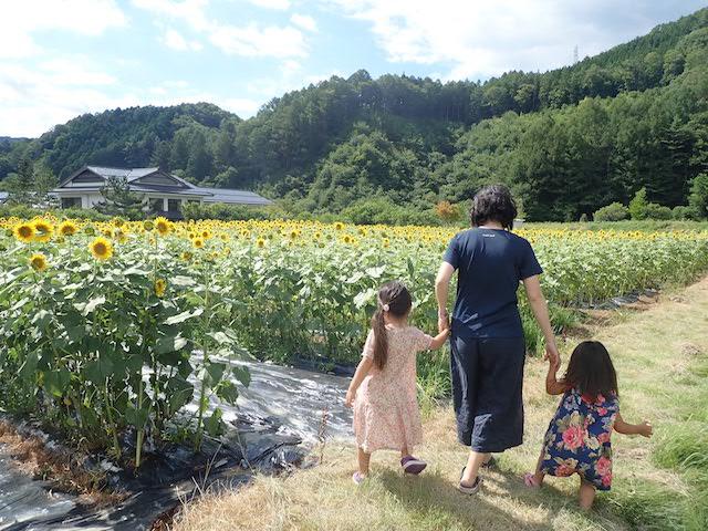 f:id:mochikichi-blog:20200906161244j:plain