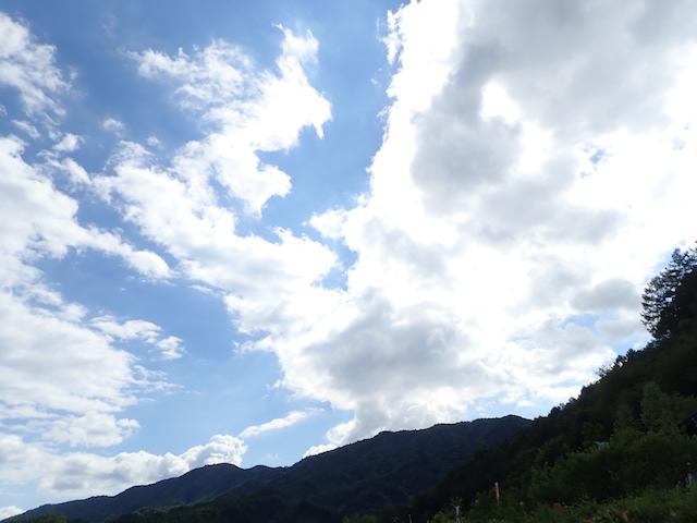 f:id:mochikichi-blog:20200906161309j:plain