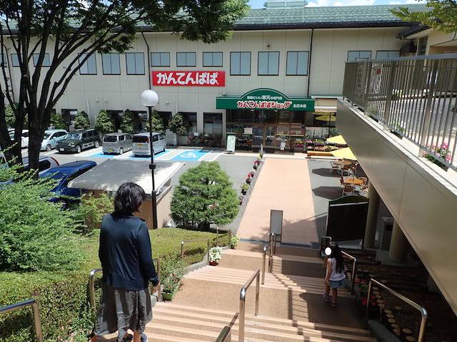 f:id:mochikichi-blog:20200906162728j:plain