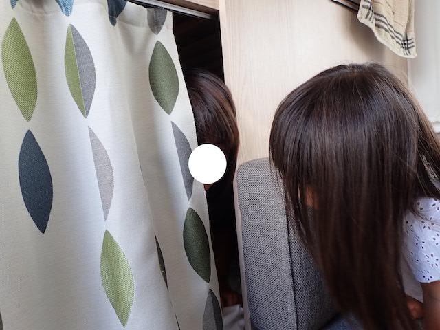 f:id:mochikichi-blog:20200906163122j:plain