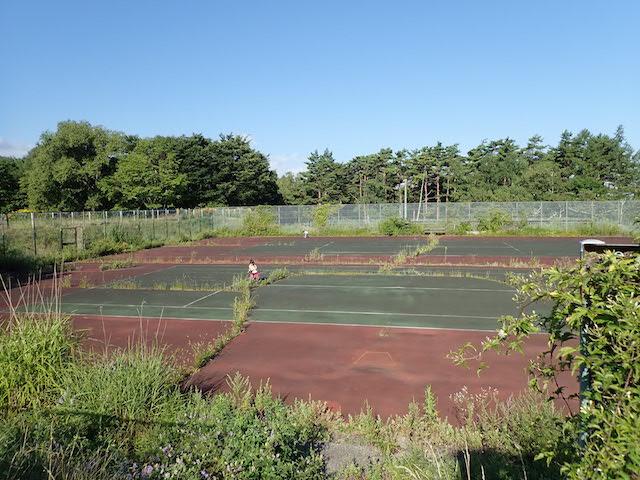 f:id:mochikichi-blog:20200906165156j:plain