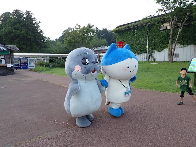 f:id:mochikichi-blog:20200906171157j:plain