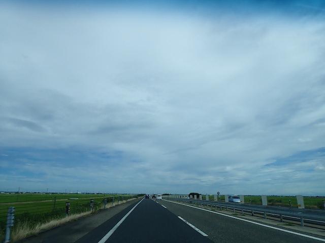 f:id:mochikichi-blog:20200906205548j:plain