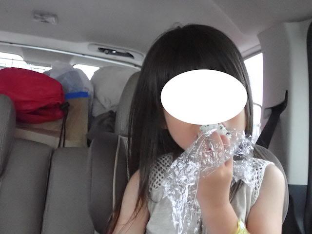 f:id:mochikichi-blog:20200906205855j:plain