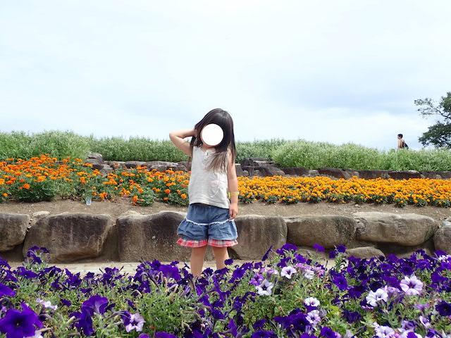f:id:mochikichi-blog:20200906205919j:plain