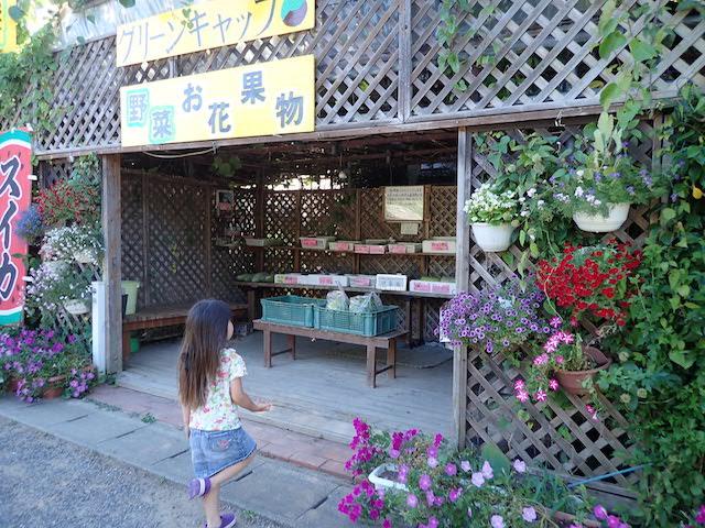 f:id:mochikichi-blog:20200906211927j:plain