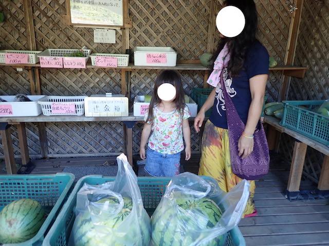 f:id:mochikichi-blog:20200906211934j:plain