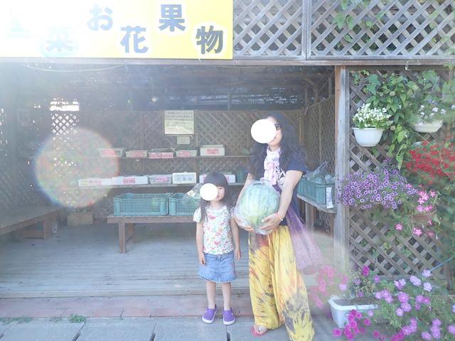f:id:mochikichi-blog:20200906211940j:plain