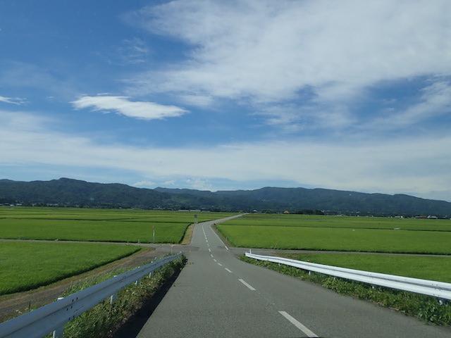 f:id:mochikichi-blog:20200906212025j:plain