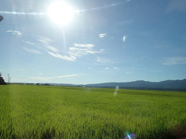 f:id:mochikichi-blog:20200906213515j:plain