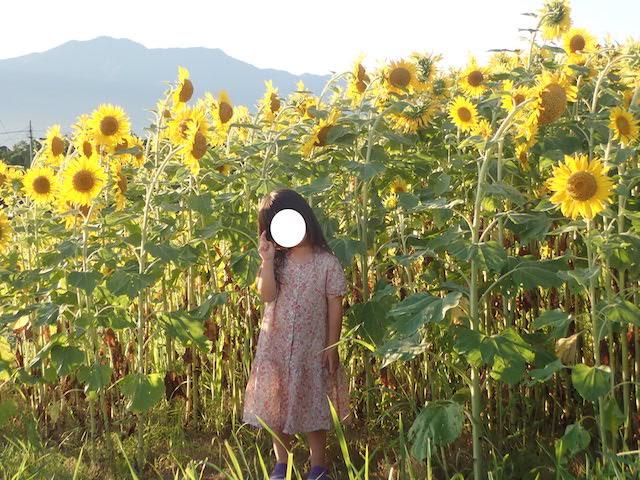 f:id:mochikichi-blog:20200914114907j:plain