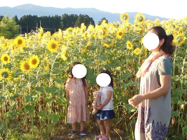 f:id:mochikichi-blog:20200914114913j:plain