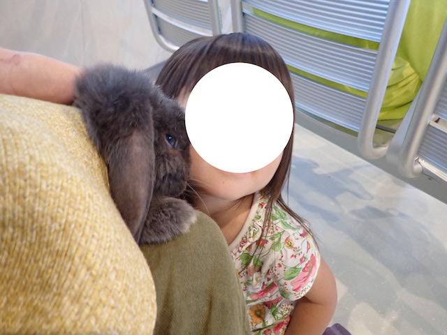f:id:mochikichi-blog:20200914123749j:plain
