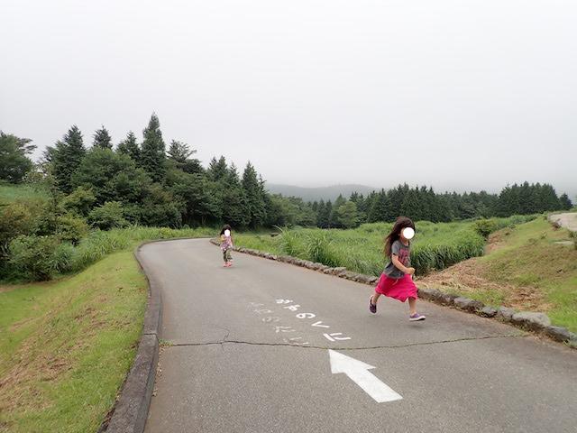 f:id:mochikichi-blog:20200914230549j:plain