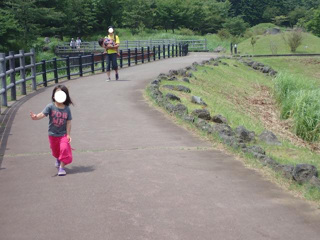 f:id:mochikichi-blog:20200914230724j:plain