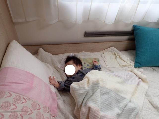 f:id:mochikichi-blog:20200926153732j:plain
