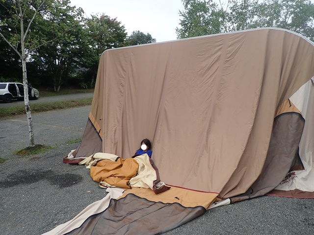 f:id:mochikichi-blog:20200928225814j:plain
