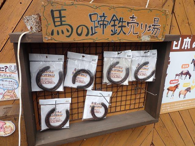 f:id:mochikichi-blog:20200929214732j:plain