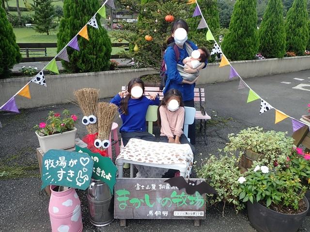 f:id:mochikichi-blog:20200929215013j:plain