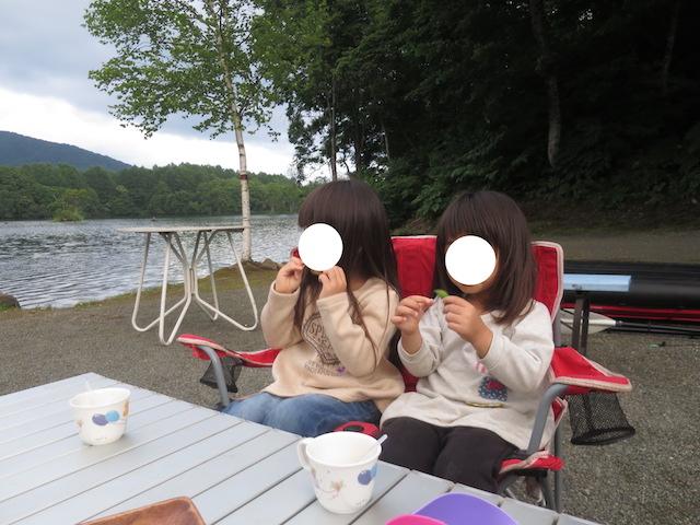 f:id:mochikichi-blog:20200929220437j:plain