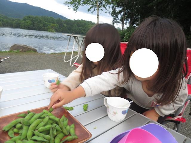 f:id:mochikichi-blog:20200929220447j:plain
