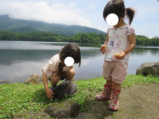 f:id:mochikichi-blog:20200929223137j:plain