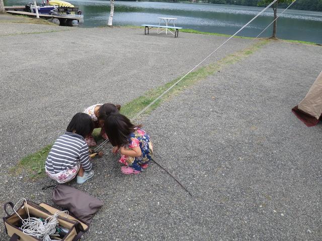 f:id:mochikichi-blog:20201001092049j:plain
