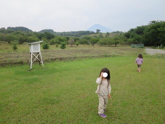 f:id:mochikichi-blog:20201001104908j:plain