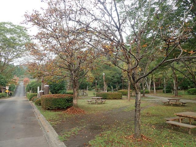 f:id:mochikichi-blog:20201003215012j:plain