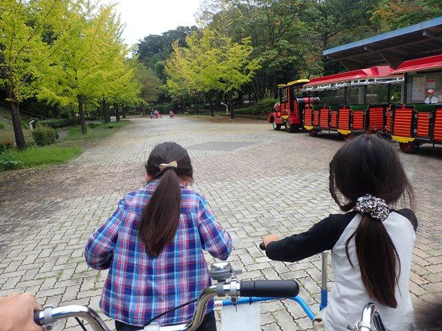 f:id:mochikichi-blog:20201003215106j:plain