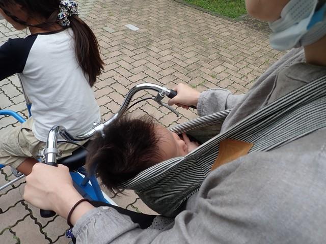 f:id:mochikichi-blog:20201003215111j:plain