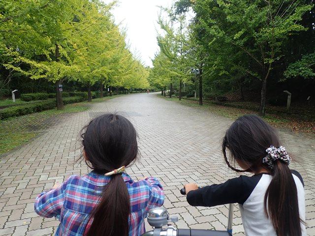 f:id:mochikichi-blog:20201003215114j:plain