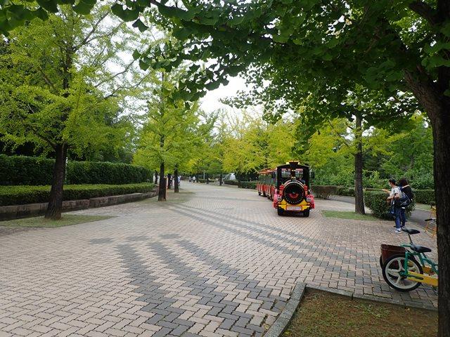 f:id:mochikichi-blog:20201003215130j:plain