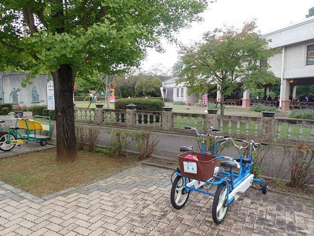 f:id:mochikichi-blog:20201003215134j:plain