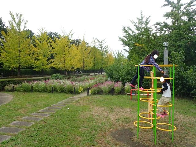 f:id:mochikichi-blog:20201003215137j:plain